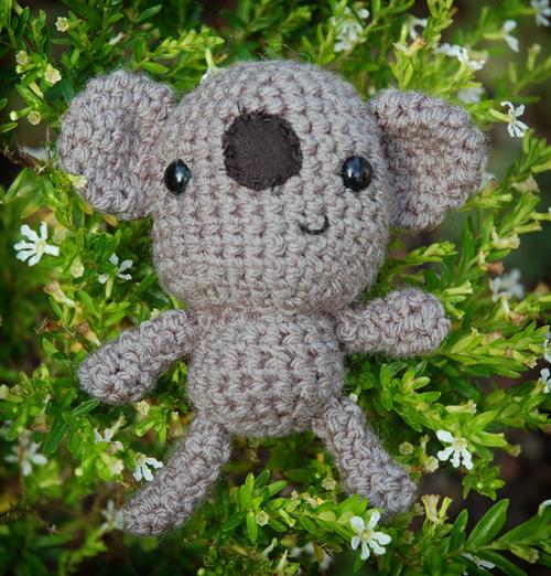 amy_koala