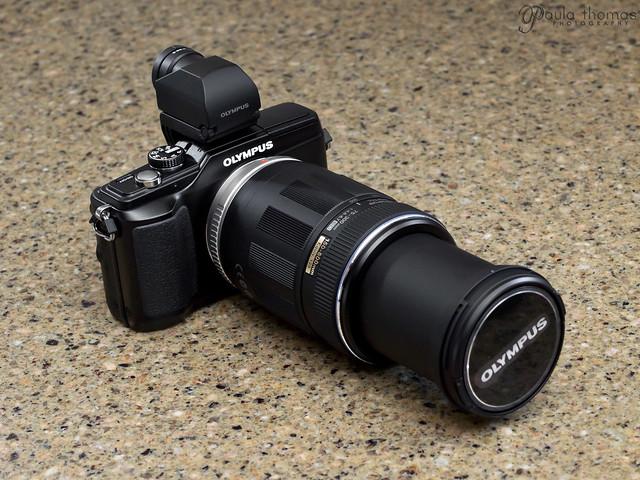 Olympus E-PL2 + 75-300mm + EVF-2