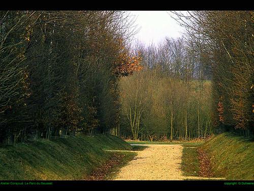Corajoud-parc-Sausset-36