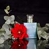 Remember me.. (Rebeca Mello) Tags: stilllife photoshop canon studio perfume perfum christiandior rebeca rememberme cs5 eos50d canoneos50d mcmello rebecamello sbfmasterpiece sbfgrandmaster