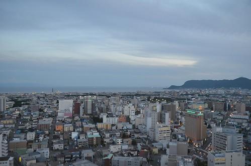 五稜郭タワーから見た函館市