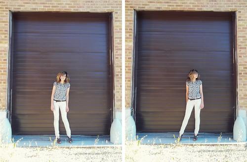 browndoor1