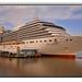 CRUISE SHIP ARCADIA