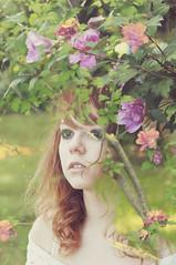 (yyellowbird) Tags: pink flowers girl overlay cari bleh