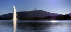 Lake Burley Griffin (Tintinara) Tags: