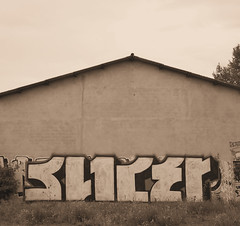 Toulouse (SLICER AWOL) Tags: abandoned graffiti chrome toulouse awol mct slicer awolcrew