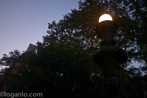Street lamp in Byrant Park, in NYC