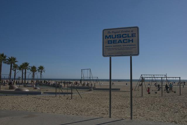 D1 Muscle Beach