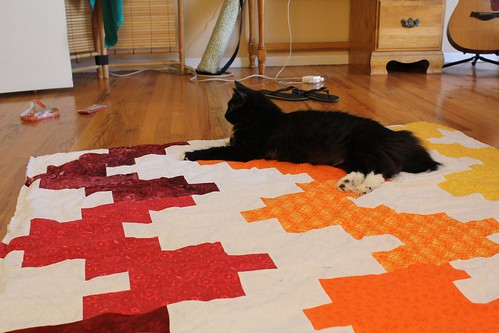 Quilt in Progress - Getting some love