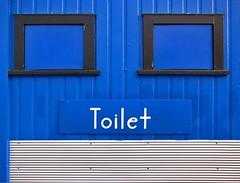 Blue Toilet, Featherston (TV DiSKO) Tags: blue newzealand window silver toilet aotearoa corrugated featherston