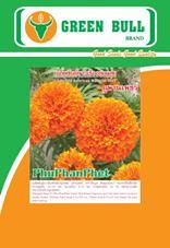 ดาวเฮือง ปลูกดอกดาวเฮือง เมล็ดพันธุ์ดาวเฮือง วิธีการปลูกดอกดาวเรือง เมล็ดพันธุ์ดาวเรืองตัดดอกลูกผสมภูพานเพชร ตรากรีนบูล  F1 hat giong hoa cuc van tho marigold seeds flower green bull brand 9.2 k