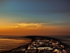 Sunset of the sea (MOSTAFA HAMAD | PHOTOGRAPHY) Tags: pictures blue trees sunset sea sky sun mountains color tree nature water clouds sunrise landscape photography meer wasser dubai day fotografie sonnenuntergang natur uae picture himmel wolken berge national week landschaft month sonne bume sonnenaufgang hamad baum sharjah geographic   mostafa                               mostafahamad