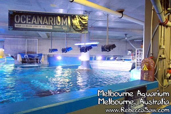 MELBOURNE AQUARIUM-06