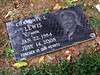 Grave of Chamonte Levalle Lewis