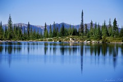 I love to think of nature. . . (Explored) (misst.shs) Tags: blue trees mountains nature reflections nikon hike pristine northidaho romannoselake alpinelack