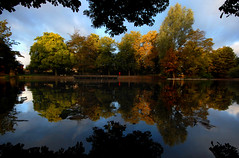 Vernon Park, Basford: first signs of autumn (blinkingidiot) Tags: nottingham autumn swan colours basford vernonpark bulwell nottinghamwildlife