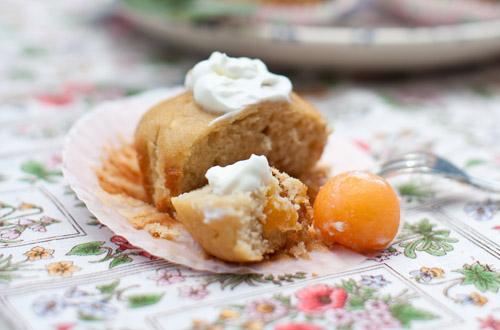 6_Apple_Cupcakes