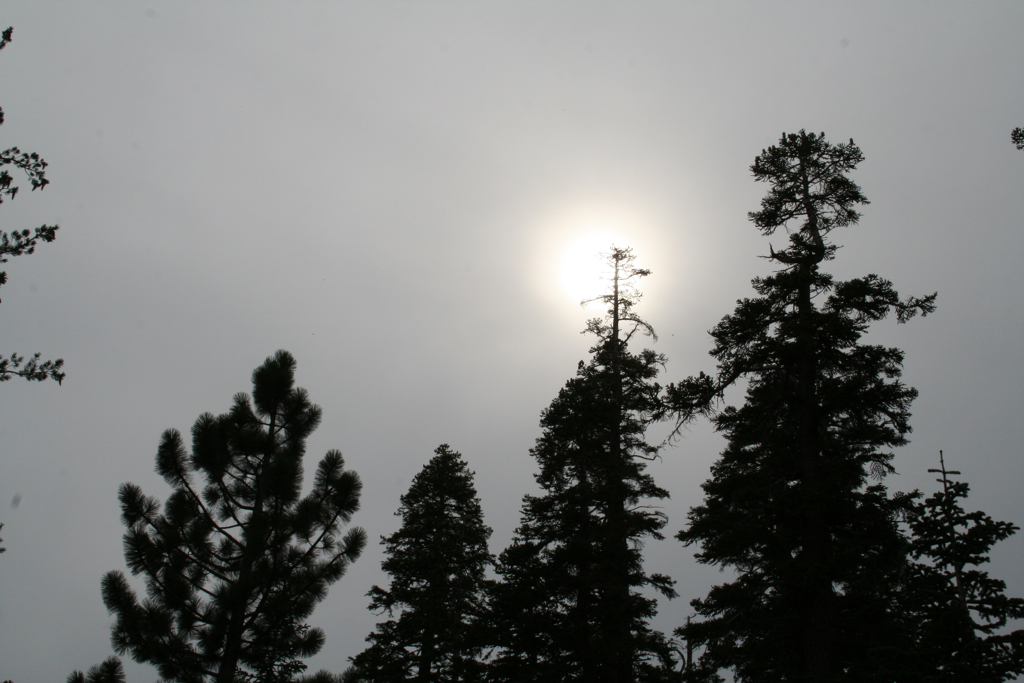 Sun through the clouds -- Angora Lakes hike