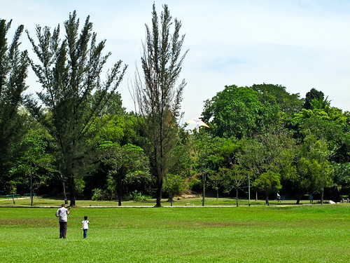 IMG_0571 Flying Kite , 放风筝,Polo Ground ,Ipoh