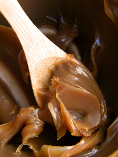Una Cucharada de Dulce de Leche | A Spoonful of Dulce de Leche by katiemetz, on Flickr