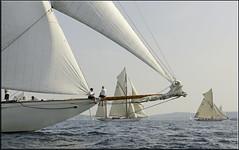 Soon - i will see them again! (mhobl) Tags: boats sailing sail regatta 2009 sylvia eleonora sainttropez moonbeamiii eleonora5
