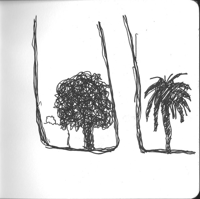 Palms -- BART Drawing
