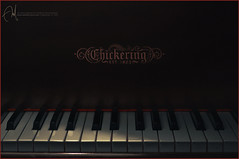 #30 Piano | Ten-To~on   V.2 (Abdulla Attamimi Photos [@AbdullaAmm]) Tags: music photography photo nikon keyboard photos song piano photographic 2008 org 2010  abdulla abdullah amm   d90 sonate pianokeyboard tamimi       attamimi  desamm abdullahamm abdullaamm  altamimialtamimi    abdullaammnet abdullaammcom pianosonoate