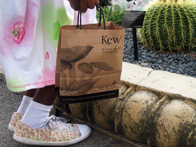 kew gardens bag