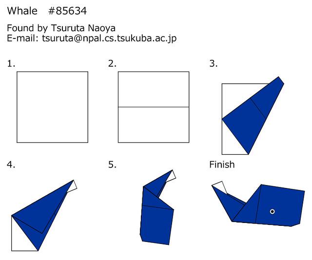 Whale85634