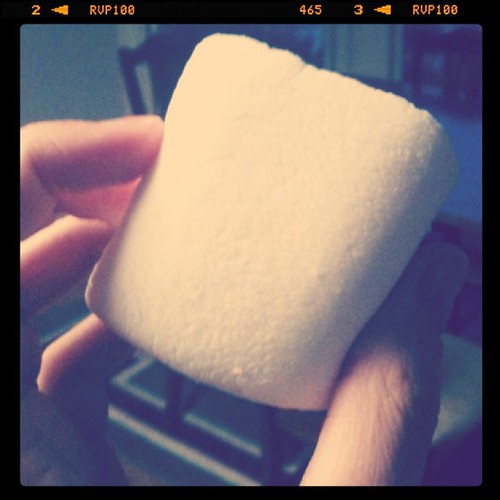 Enjoying some giant marshmallows. Yum!
