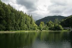 Blick über den Luegsteinsee