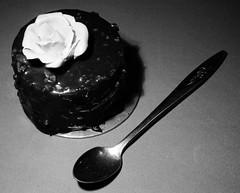 {206/365} (Kap-) Tags: food cake dessert spoon pastry 365 nourriture cuillre cuiller gteau ptisserie