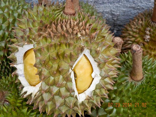 DSCN2138 榴莲,durian