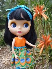 Tigerlily enjoying the local Flora!