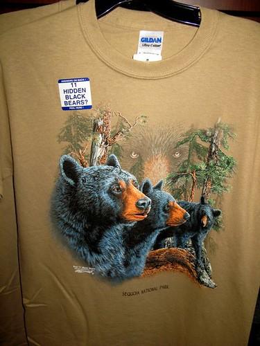 Hidden Bears