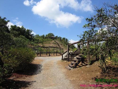 香格里拉農場140