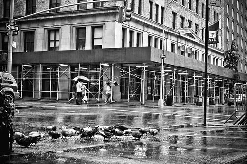 New York - Empty Streets