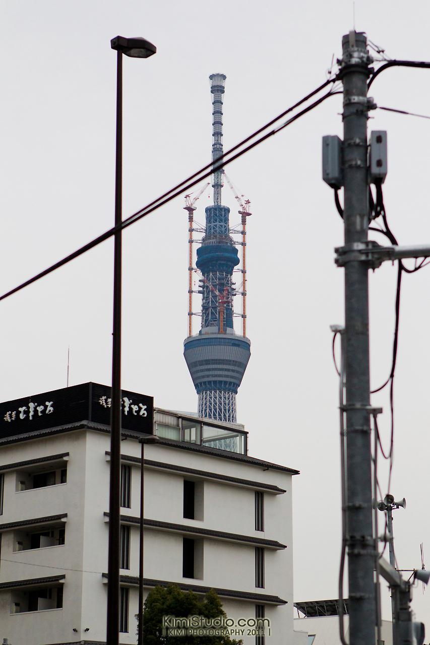2011年 311 日本行-884
