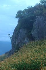 IMGP8422 (Rick.Ying) Tags: taiwan hualien sixtystonemountain goldenneedles fulitownship jhutianvillage