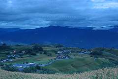 (Rick.Ying) Tags: taiwan hualien sixtystonemountain goldenneedles fulitownship jhutianvillage