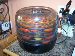 using a food dehydrator is a fast and simple way to dry tomatoes