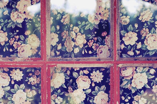 brusehult window