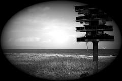 Home alone (msiapan) Tags: sea bw beach monochrome loft seaside mediterranean nest pigeon empty cyprus birdhouse polis pafos κύπροσ πάφοσ περιστερώνασ