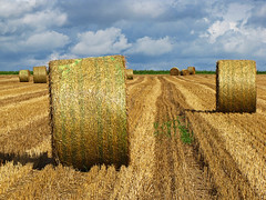 Summer has gone (RainerSchuetz) Tags: texture field harvest stubblefield baleofstraw blinkagain