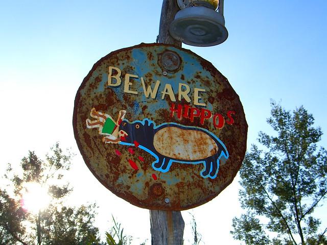 Beware Hippo's