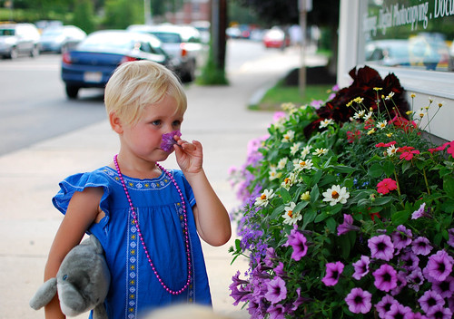 smelling flowers-0511