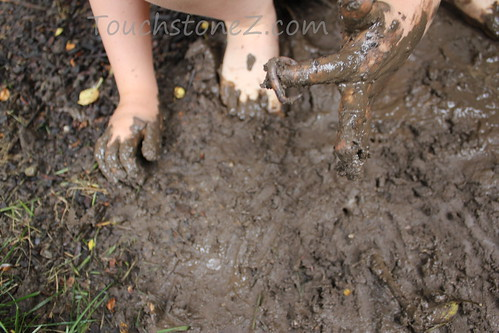 Finding Earthworms in the Mud