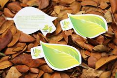Generation Green Die-Cut Business Card (lemongraphic) Tags: singapore businesscard branding namecard diecut corporatecard leafcard diecutbusinesscard greenbusinesscard greennamecard leafnamecard