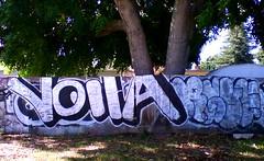 voila (one80seven) Tags: graffiti 14k gf 44 ase voila rgue hnic joogs