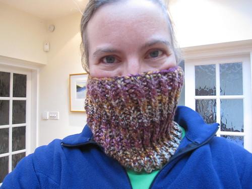 It's a bandit mask!